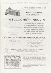 Wellcome Insulin